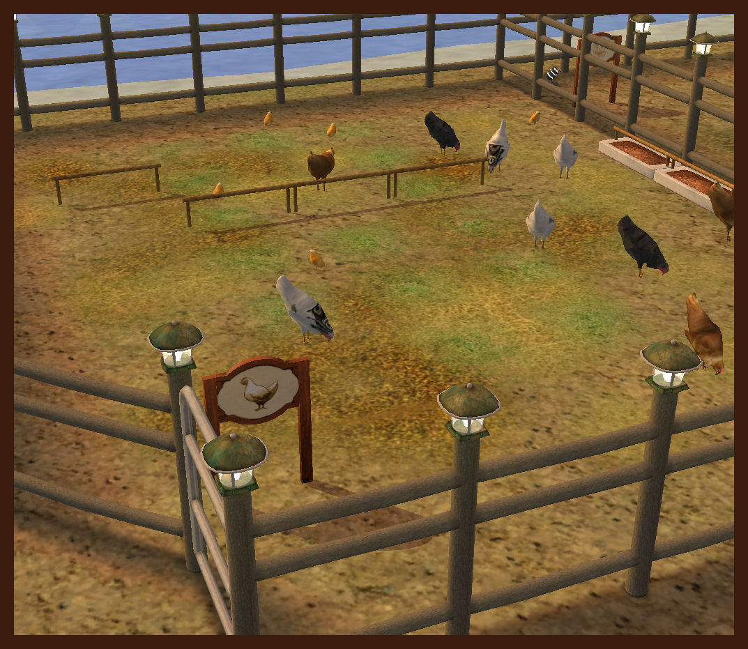 Animated Chickens - Animated Objects - Affinity Sims